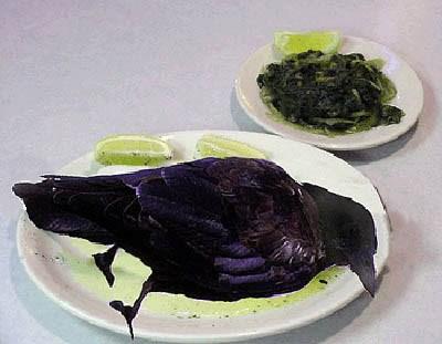 eating crow.jpg