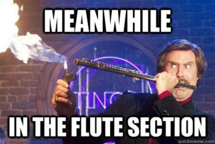l-21324-meanwhile-in-the-flute-section.jpg