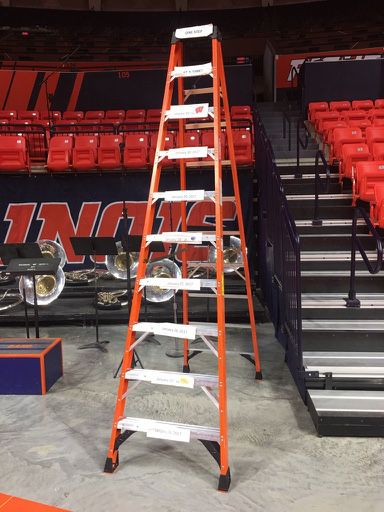 The_Ladder.0.jpg